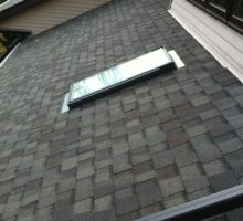 Asphalt Roof and Skylight