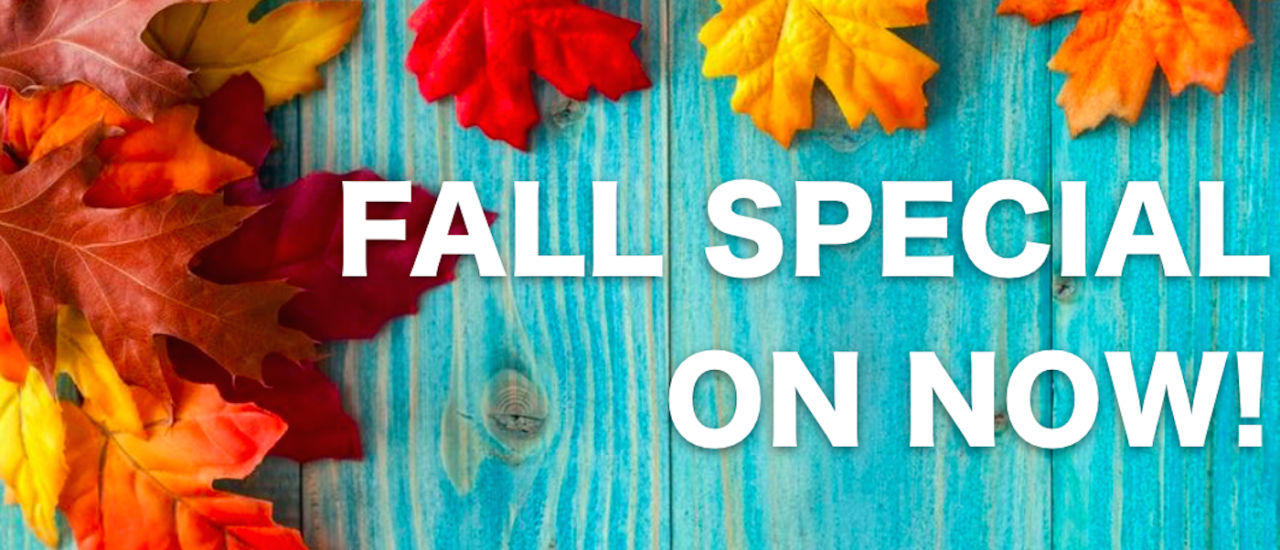 Fall Special!