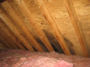 attic leak and mould